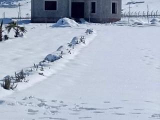 Vente d'une ferme à Azrou