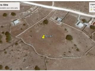 Terrain Titré près de Souiria (Safi)